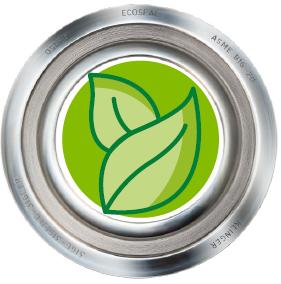 Klinger Gasket with Eco Symbol